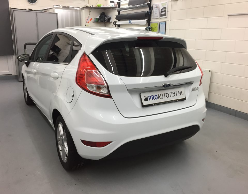 Ford Fiesta ramen blinderen